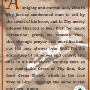 Arbor Vitae Prayer